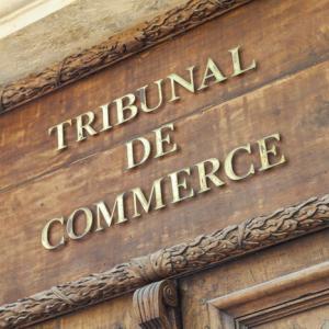Avocat droit commercial, Fontainebleau